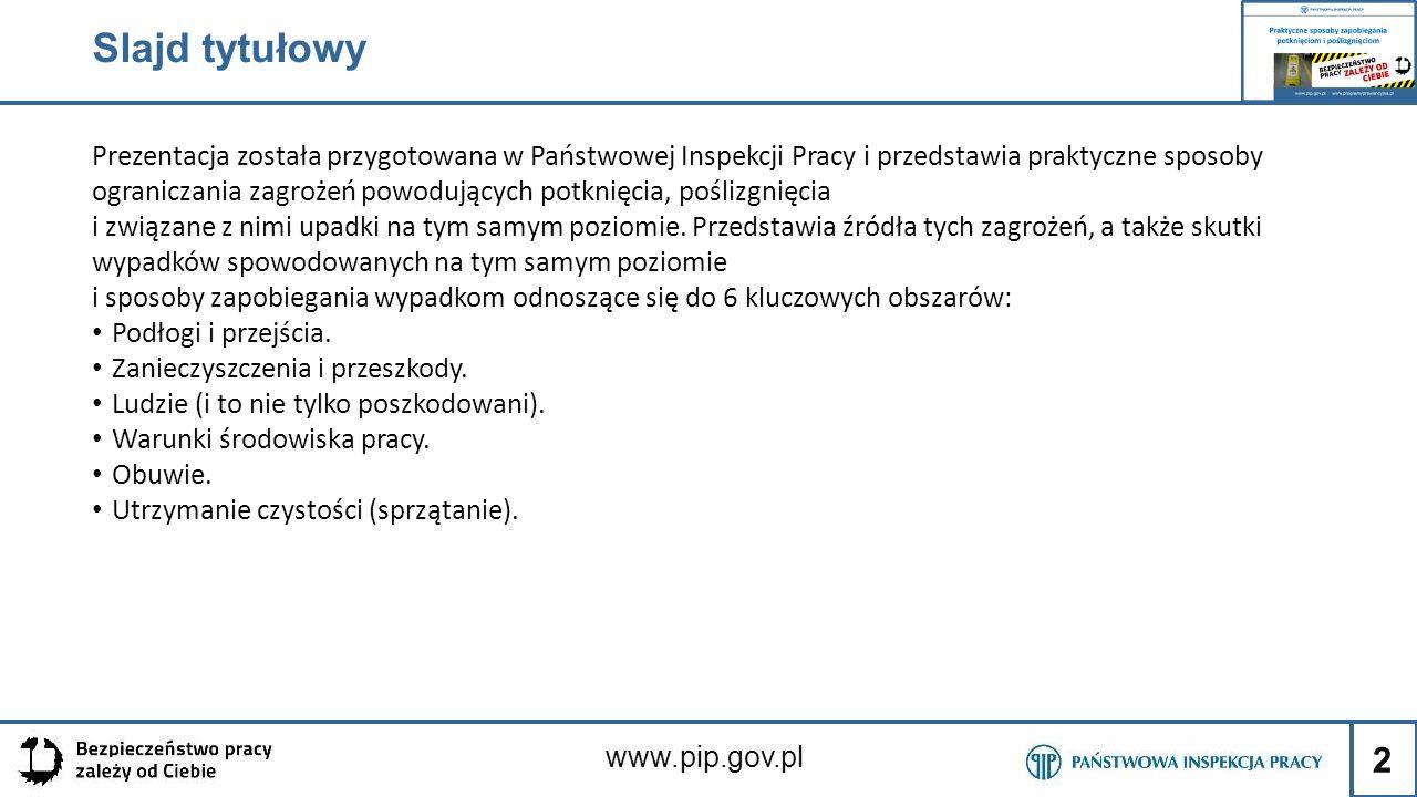 3 www.pip.gov.pl Slajd 2: Upadki na tym samym poziomie Każdy, niezależnie od wieku, zawodu czy stanu zdrowia, i miejsca pracy może się poślizgnąć lub potknąć.