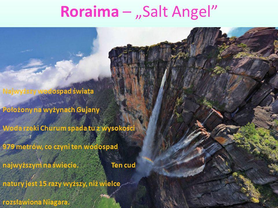 """Roraima – """"Salt Angel"""" Najwyższy wodospad świata Położony na wyżynach Gujany Woda rzeki Churum spada tu z wysokości 979 metrów, co czyni ten wodospad"""