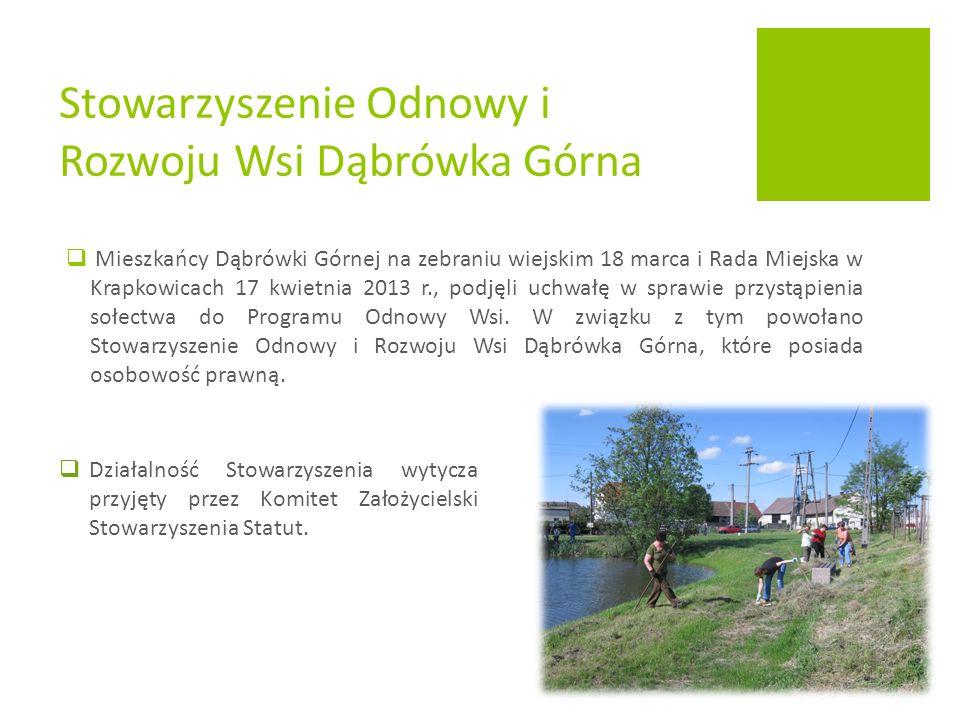  Mieszkańcy Dąbrówki Górnej na zebraniu wiejskim 18 marca i Rada Miejska w Krapkowicach 17 kwietnia 2013 r., podjęli uchwałę w sprawie przystąpienia sołectwa do Programu Odnowy Wsi.