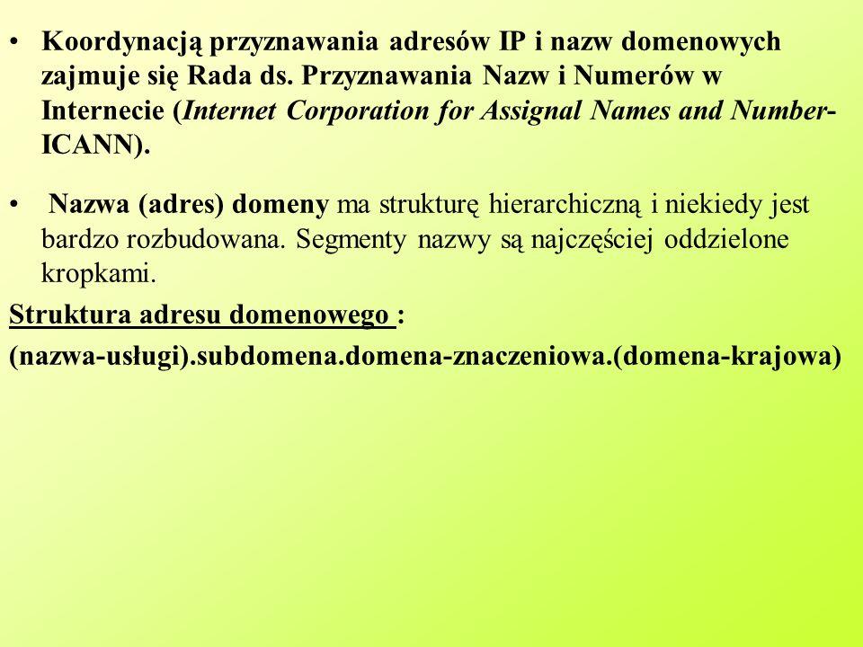 Koordynacją przyznawania adresów IP i nazw domenowych zajmuje się Rada ds.