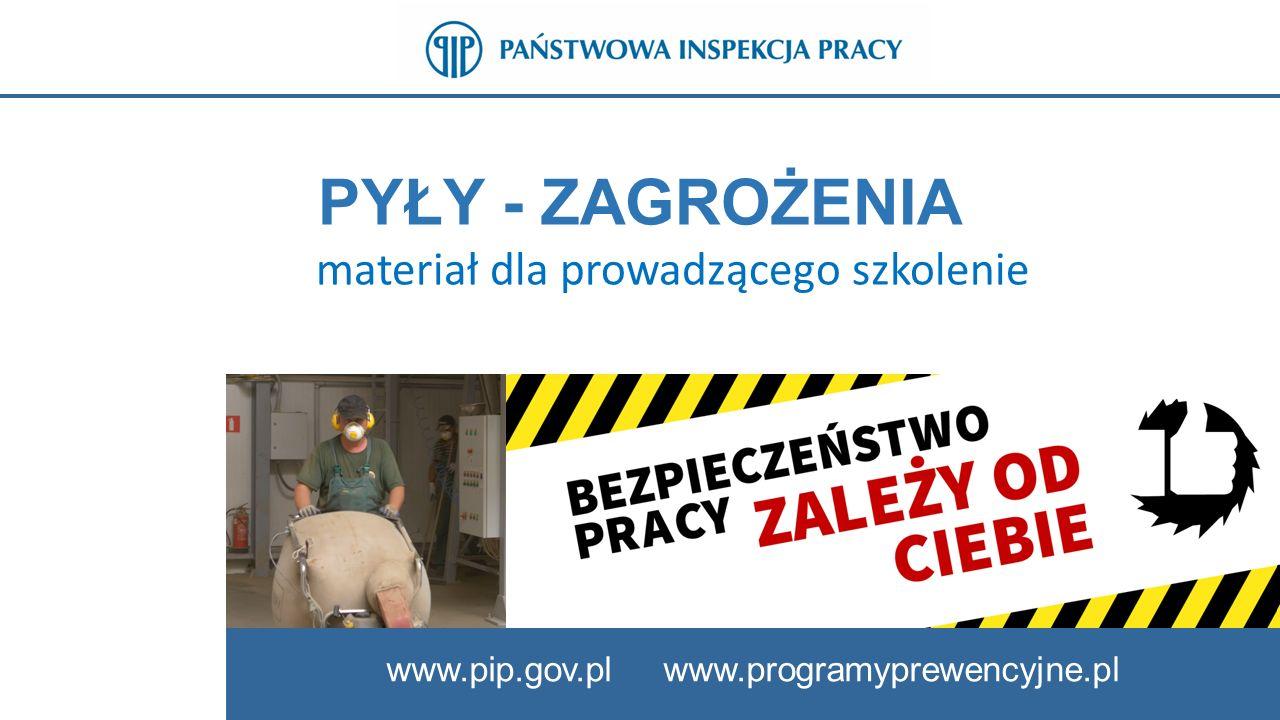 PYŁY - ZAGROŻENIA materiał dla prowadzącego szkolenie www.pip.gov.pl www.programyprewencyjne.pl