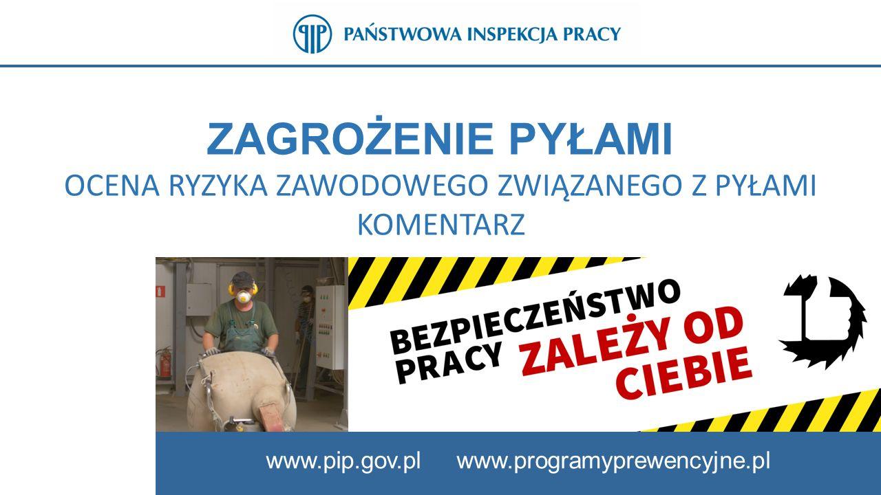 ZAGROŻENIE PYŁAMI OCENA RYZYKA ZAWODOWEGO ZWIĄZANEGO Z PYŁAMI KOMENTARZ www.pip.gov.pl www.programyprewencyjne.pl