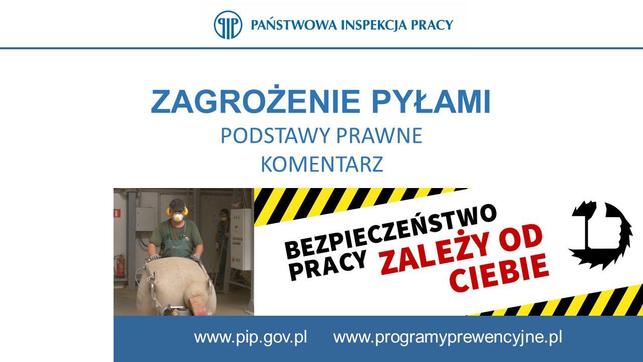 28 SLAJD 28: OCENA RYZYKA ZAWODOWEGO www.pip.gov.pl Należy pamiętać że zgodnie z przepisami art.