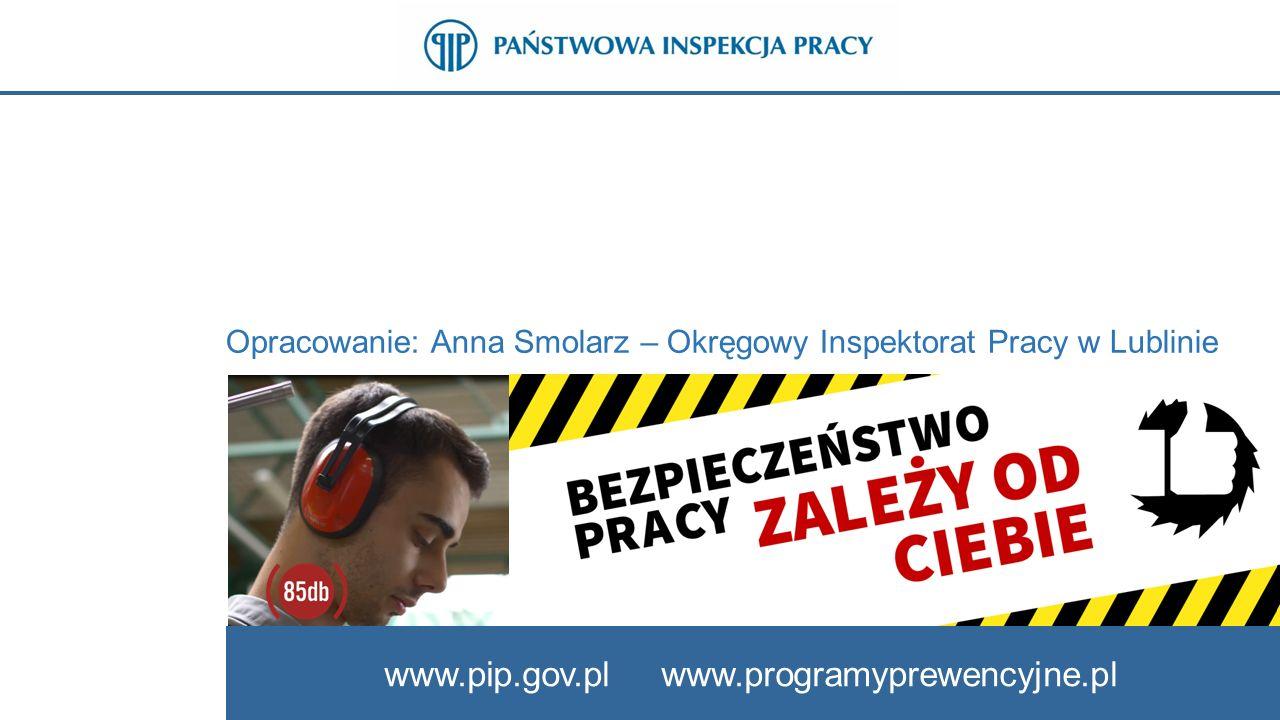 www.pip.gov.pl www.programyprewencyjne.pl Opracowanie: Anna Smolarz – Okręgowy Inspektorat Pracy w Lublinie