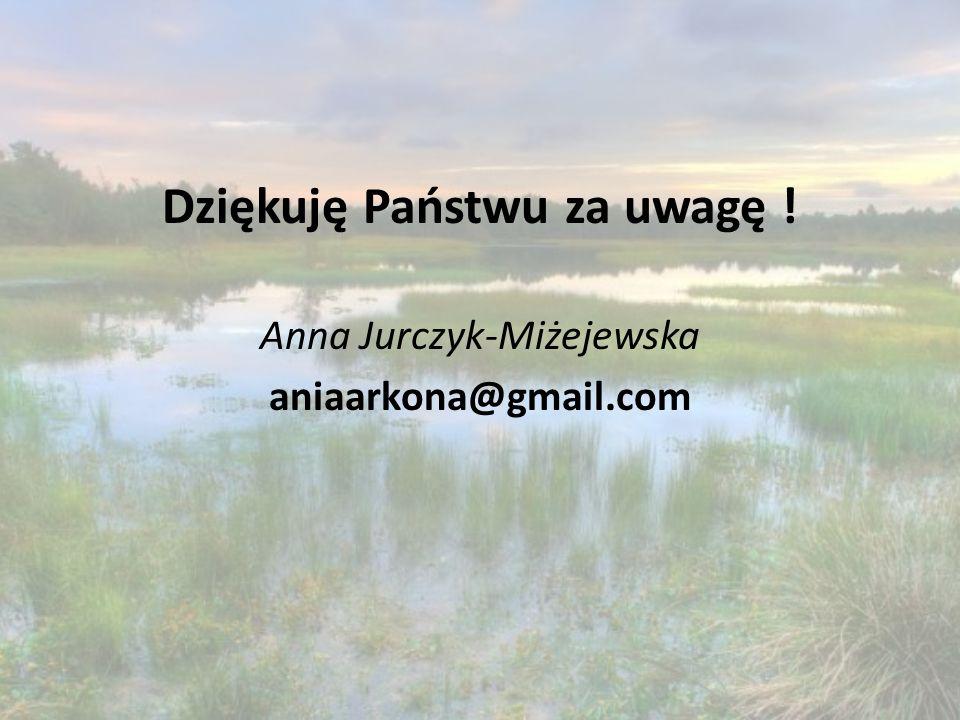 Dziękuję Państwu za uwagę ! Anna Jurczyk-Miżejewska aniaarkona@gmail.com