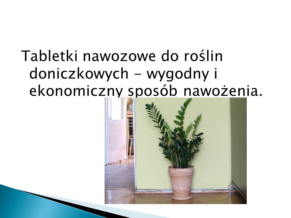 Tabletki nawozowe do roślin doniczkowych - wygodny i ekonomiczny sposób nawożenia.