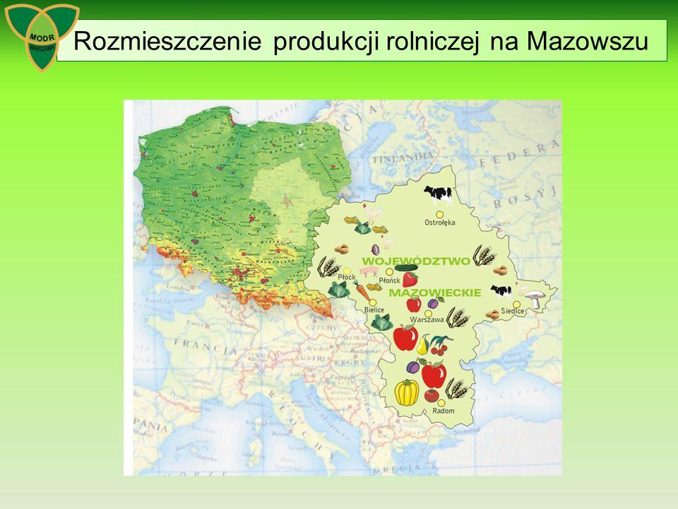 Doradztwo rolnicze w Polsce Ustawa z dnia 22 października 2004 r.