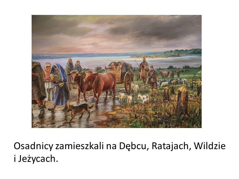 Osadnicy zamieszkali na Dębcu, Ratajach, Wildzie i Jeżycach.