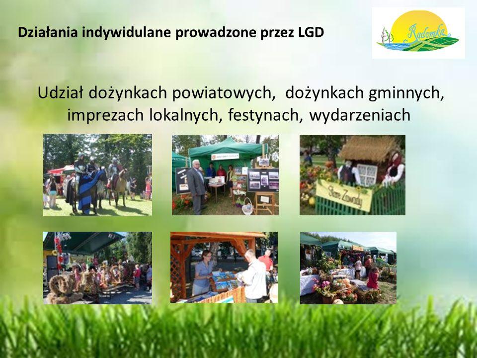 Działania indywidulane prowadzone przez LGD Udział dożynkach powiatowych, dożynkach gminnych, imprezach lokalnych, festynach, wydarzeniach