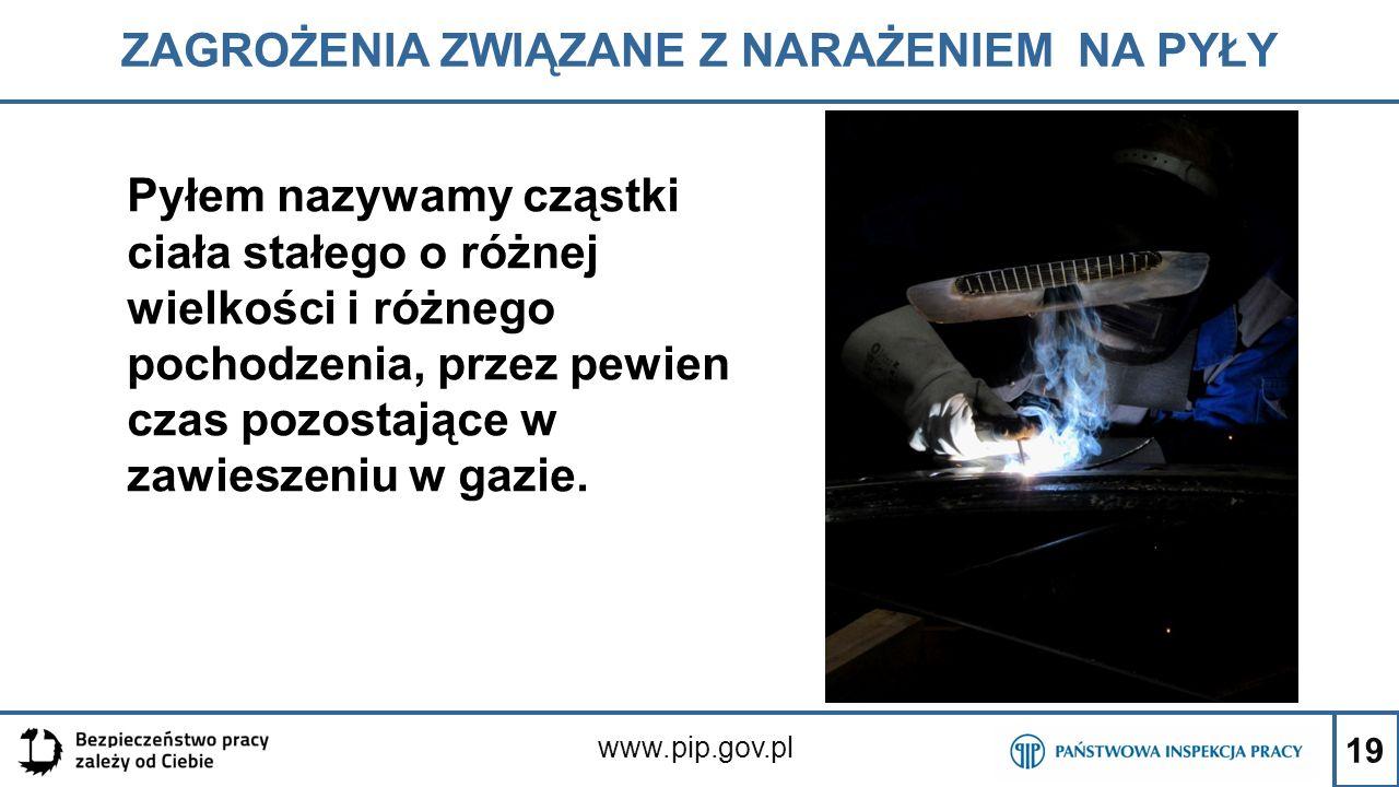19 ZAGROŻENIA ZWIĄZANE Z NARAŻENIEM NA PYŁY www.pip.gov.pl Pyłem nazywamy cząstki ciała stałego o różnej wielkości i różnego pochodzenia, przez pewien
