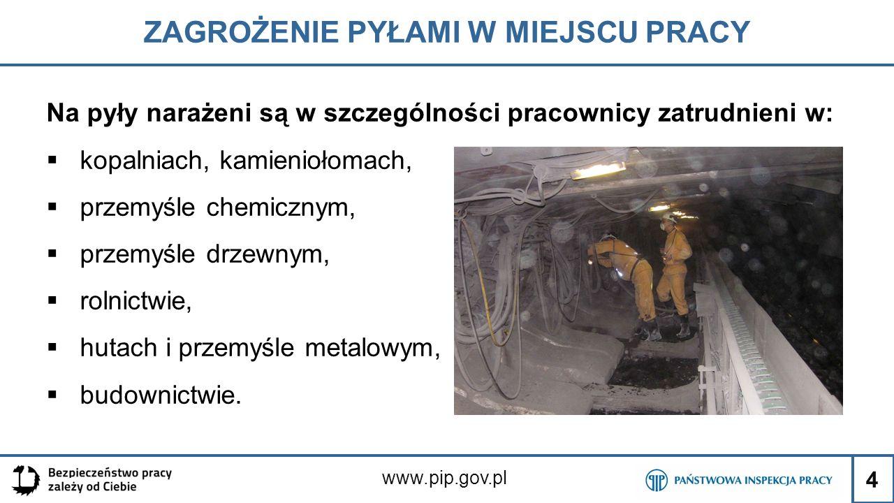 4 ZAGROŻENIE PYŁAMI W MIEJSCU PRACY www.pip.gov.pl Na pyły narażeni są w szczególności pracownicy zatrudnieni w:  kopalniach, kamieniołomach,  przem