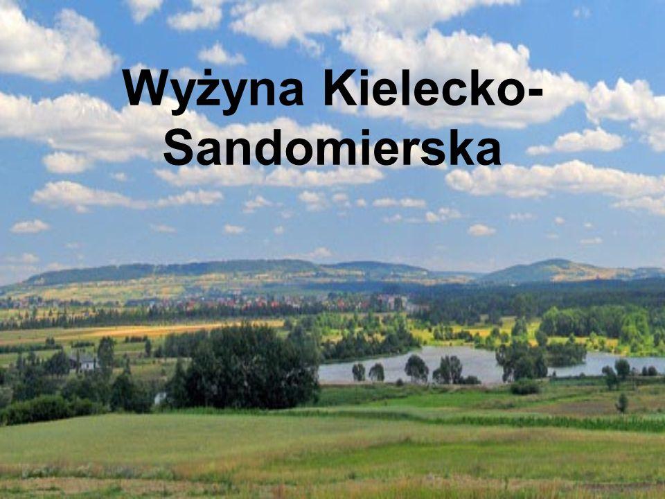 Wyżyna kielecko – Sandomierska znajduje się w Zachodnio – -Południowej części polski w województwie świętokrzyskim.
