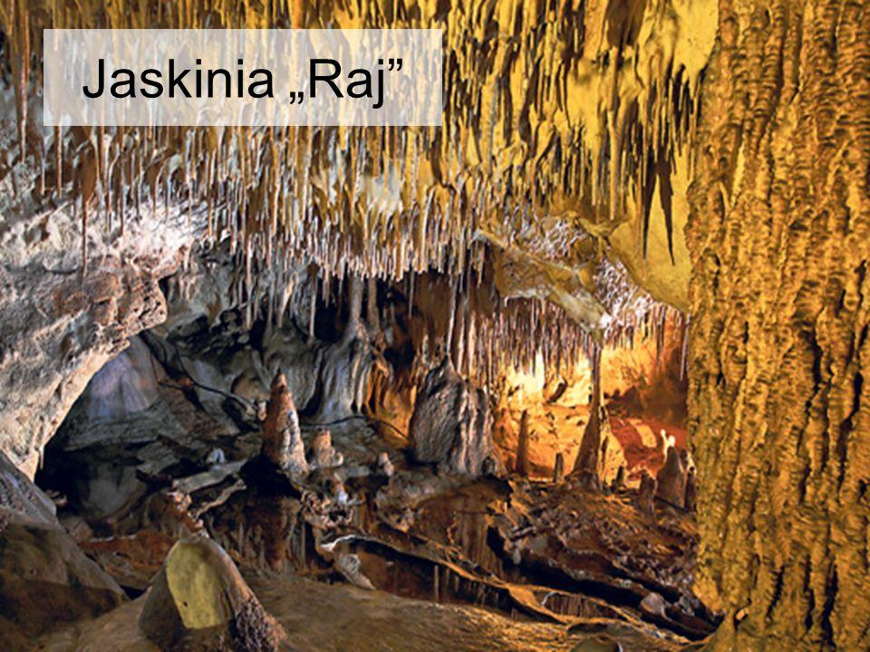 """Jaskinia """"Raj"""""""