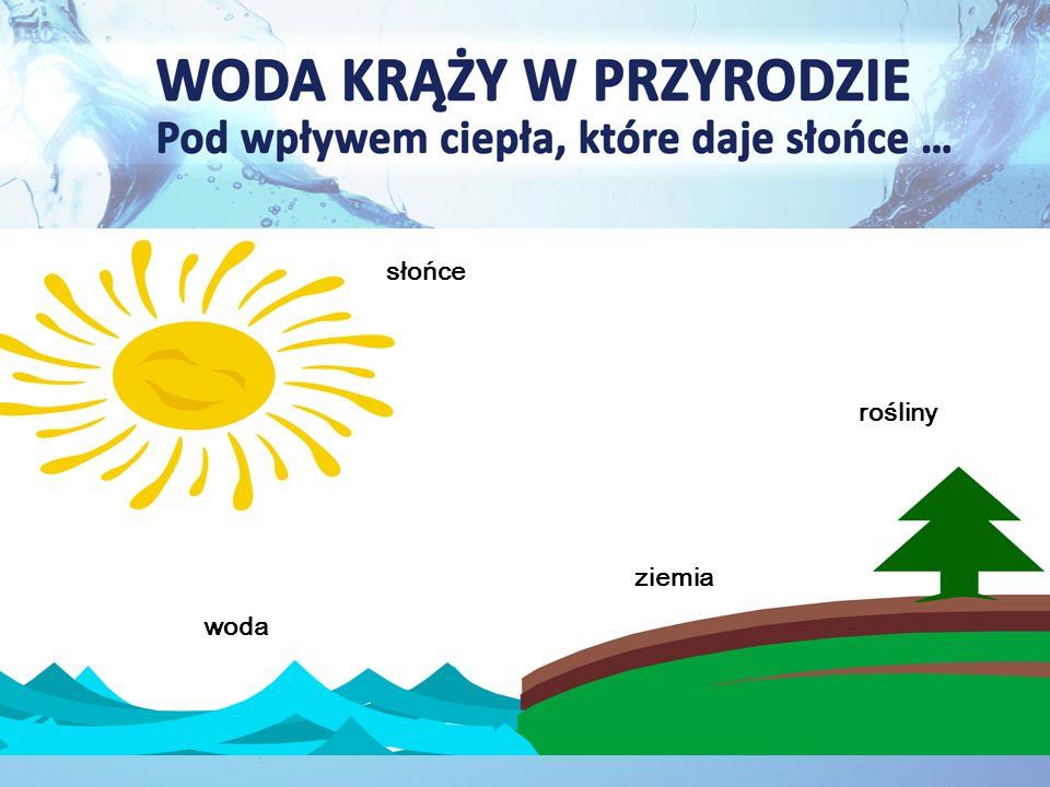 słońce woda ziemia rośliny