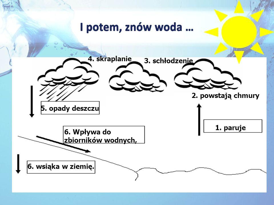 1. paruje 2. powstają chmury 5. opady deszczu 3. schłodzenie 4. skraplanie 6. Wpływa do zbiorników wodnych, 6. wsiąka w ziemię.