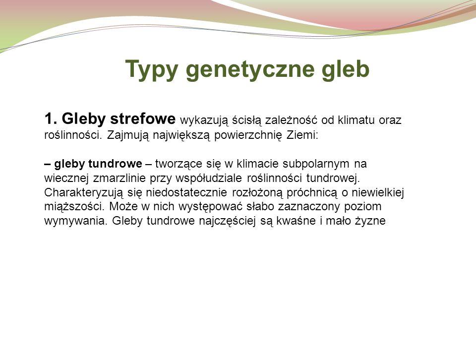 Typy genetyczne gleb 1. Gleby strefowe wykazują ścisłą zależność od klimatu oraz roślinności. Zajmują największą powierzchnię Ziemi: – gleby tundrowe