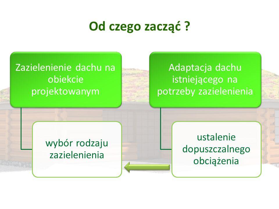 Od czego zacząć ? Zazielenienie dachu na obiekcie projektowanym wybór rodzaju zazielenienia Adaptacja dachu istniejącego na potrzeby zazielenienia ust