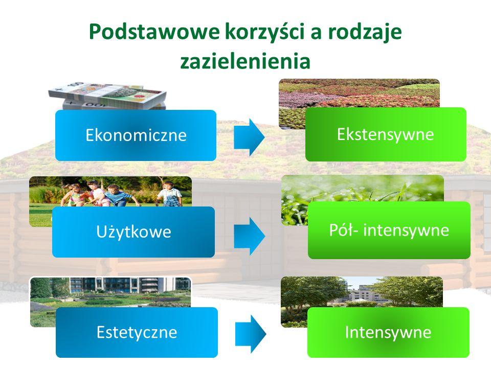 Podstawowe korzyści a rodzaje zazielenienia Ekonomiczne Ekstensywne Użytkowe Pół- intensywne EstetyczneIntensywne