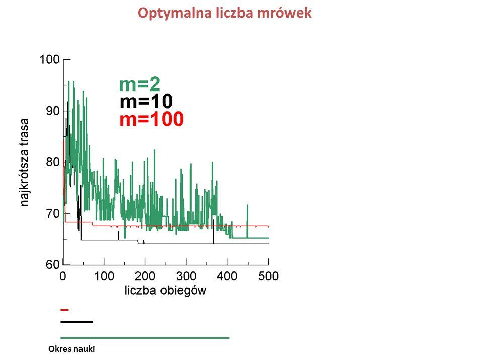 Bartłomiej Urbaniec: 20 krawędzi o największej funkcji preferencji w kolejnych iteracjach 20 najczęściej używanych krawędzi parametry  =2, q0=0.2, m=10