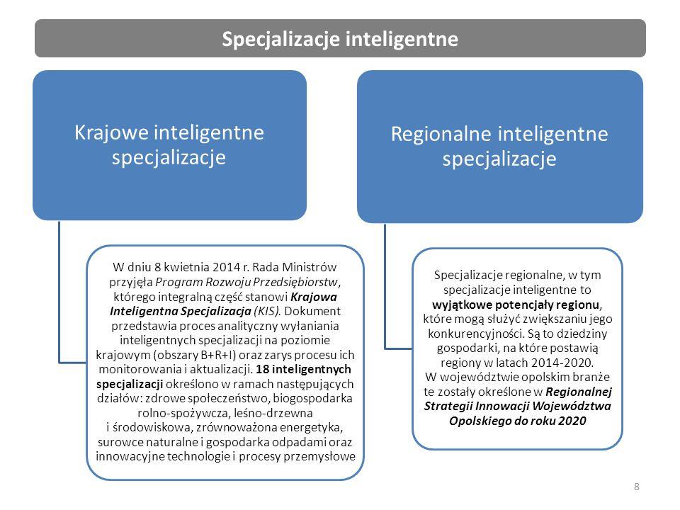 19 Przykładowe typy projektów (c.d.): –Proinnowacyjne usługi dla przedsiębiorstw – usługi proinnowacyjne świadczone przez IOB na rzecz MŚP.