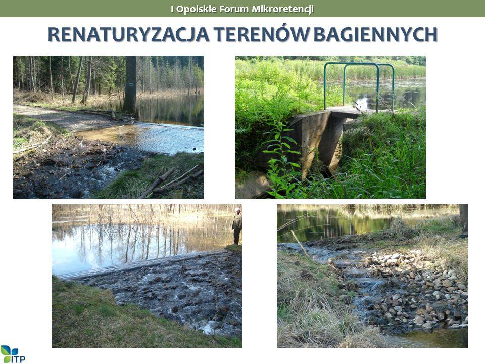 RENATURYZACJA TERENÓW BAGIENNYCH I Opolskie Forum Mikroretencji