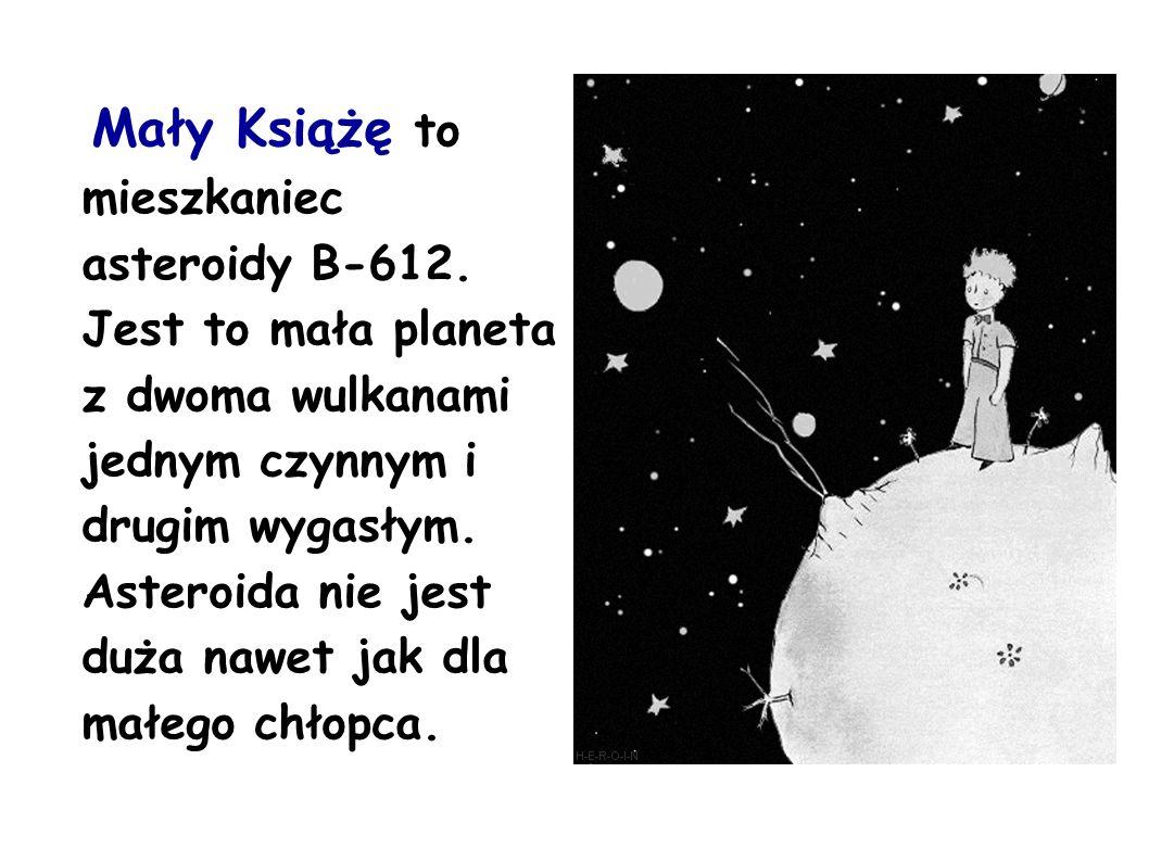 Mały Książę to mieszkaniec asteroidy B-612. Jest to mała planeta z dwoma wulkanami jednym czynnym i drugim wygasłym. Asteroida nie jest duża nawet jak