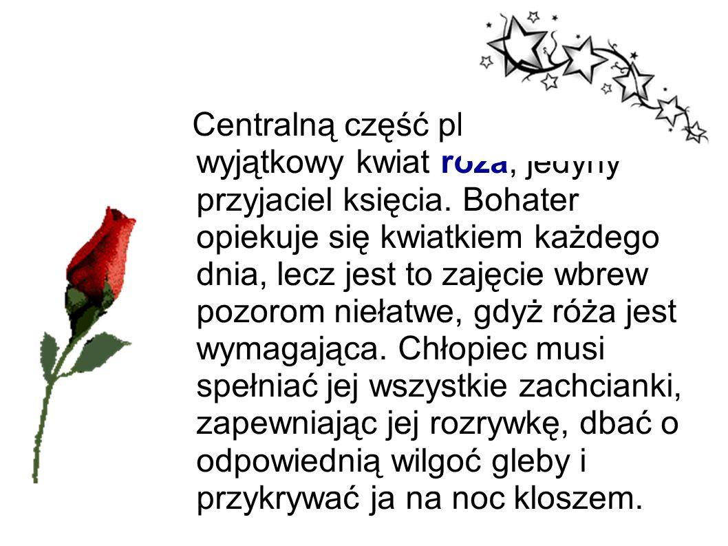 Centralną część planety zajmuje wyjątkowy kwiat róża, jedyny przyjaciel księcia. Bohater opiekuje się kwiatkiem każdego dnia, lecz jest to zajęcie wbr