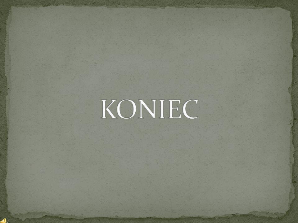 """Literatura: -Ewy Czemierowska-Koruba, Kazimierz Koruba: """"Szkoła bez przemocy Szkolny system przeciwdziałania agresji i przemocy poradnik dla nauczycieli."""