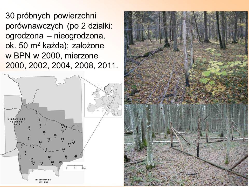 30 próbnych powierzchni porównawczych (po 2 działki: ogrodzona – nieogrodzona, ok. 50 m 2 każda); założone w BPN w 2000, mierzone 2000, 2002, 2004, 20