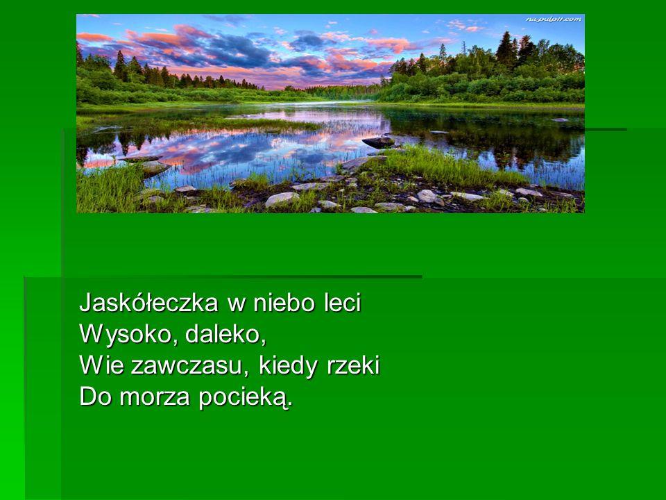 Jaskółeczka w niebo leci Wysoko, daleko, Wie zawczasu, kiedy rzeki Do morza pocieką.