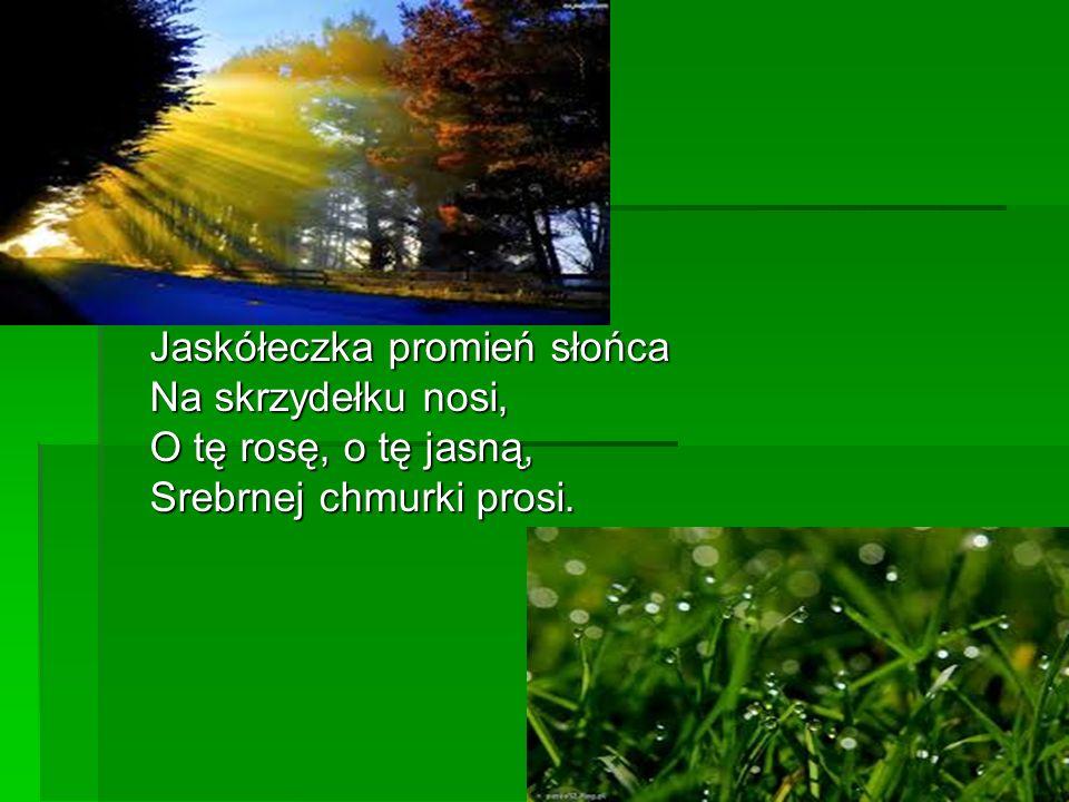 Jaskółeczka promień słońca Na skrzydełku nosi, O tę rosę, o tę jasną, Srebrnej chmurki prosi.