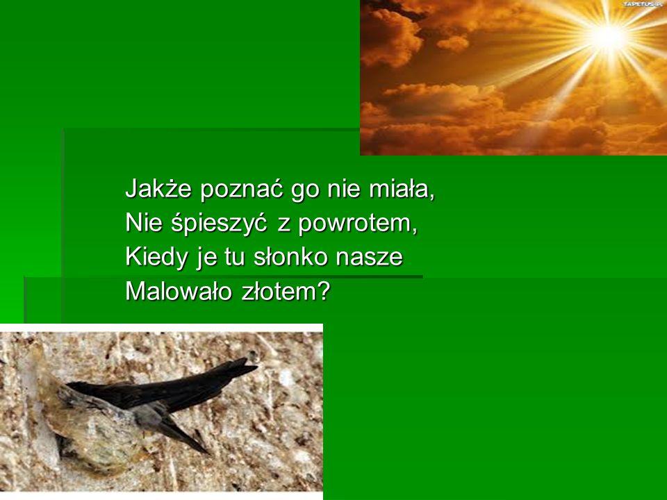 "Adam Nowak kl.5 ""c Opiekun pracy - mgr Beata Sosnowska - Rutka PSP nr 29 im."
