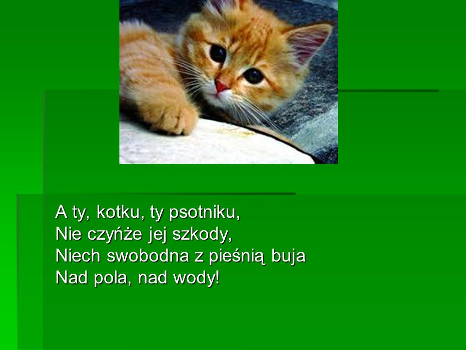 A ty, kotku, ty psotniku, Nie czyńże jej szkody, Niech swobodna z pieśnią buja Nad pola, nad wody!