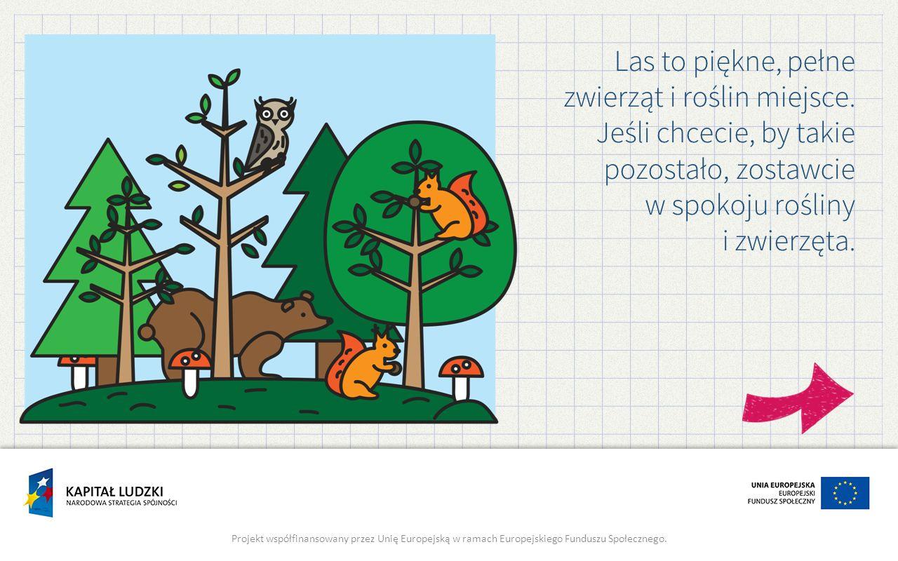 Las to piękne, pełne zwierząt i roślin miejsce. Jeśli chcecie, by takie pozostało, zostawcie w spokoju rośliny i zwierzęta. Projekt współfinansowany p