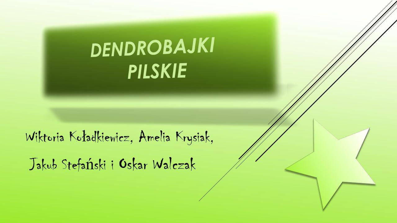 Wiktoria Ko ł adkiewicz, Amelia Krysiak, Jakub Stefa ń ski i Oskar Walczak