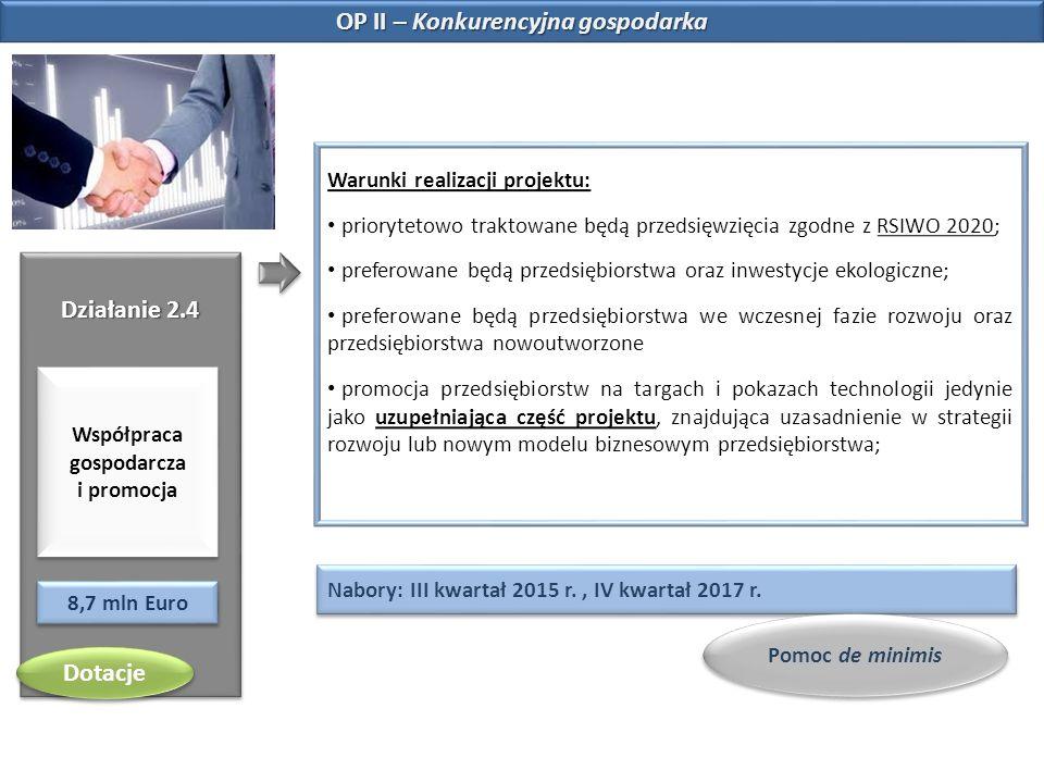 OP II – Konkurencyjna gospodarka Działanie 2.4 Współpraca gospodarcza i promocja 8,7 mln Euro Warunki realizacji projektu: priorytetowo traktowane będ