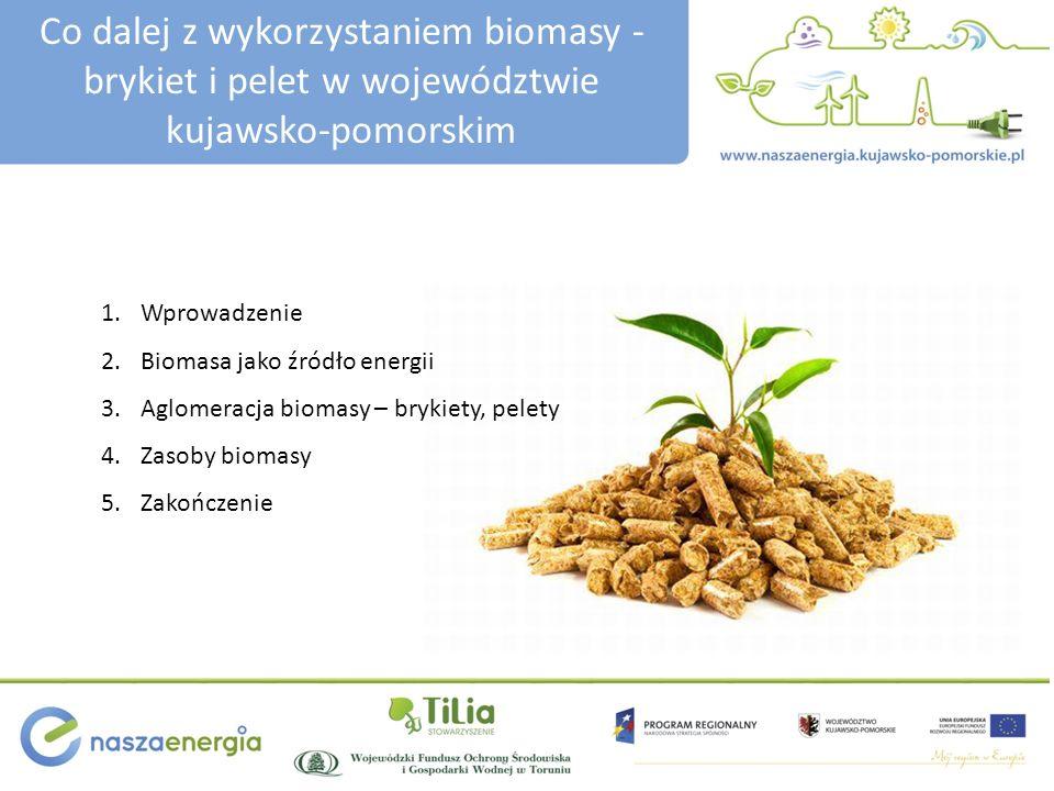 Co dalej z wykorzystaniem biomasy - brykiet i pelet w województwie kujawsko-pomorskim 1.Wprowadzenie 2.Biomasa jako źródło energii 3.Aglomeracja bioma