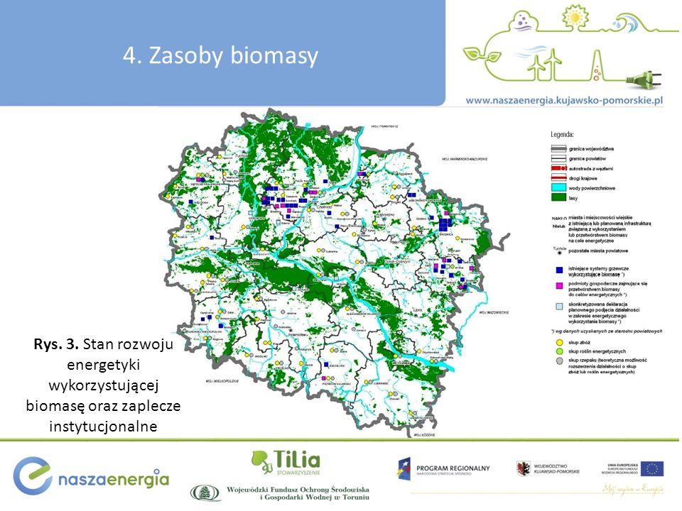 Rys. 3. Stan rozwoju energetyki wykorzystującej biomasę oraz zaplecze instytucjonalne 4. Zasoby biomasy