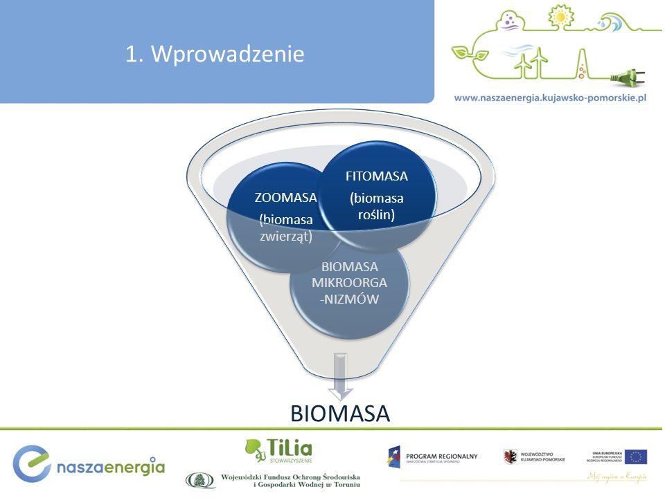 1. Wprowadzenie BIOMASA BIOMASA MIKROORGA -NIZMÓW ZOOMASA (biomasa zwierząt) FITOMASA (biomasa roślin)