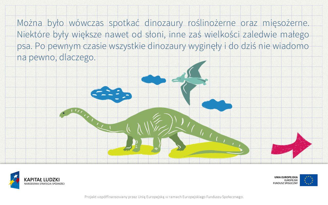 Można było wówczas spotkać dinozaury roślinożerne oraz mięsożerne.