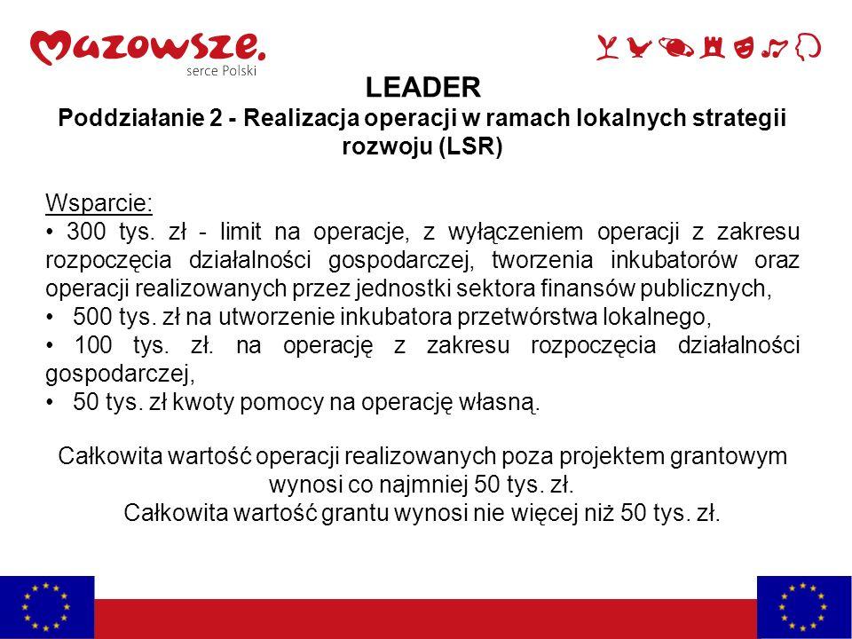 LEADER Poddziałanie 2 - Realizacja operacji w ramach lokalnych strategii rozwoju (LSR) Wsparcie: 300 tys. zł - limit na operacje, z wyłączeniem operac