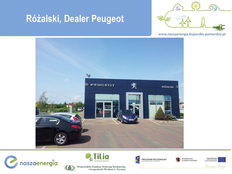 Różalski, Dealer Peugeot