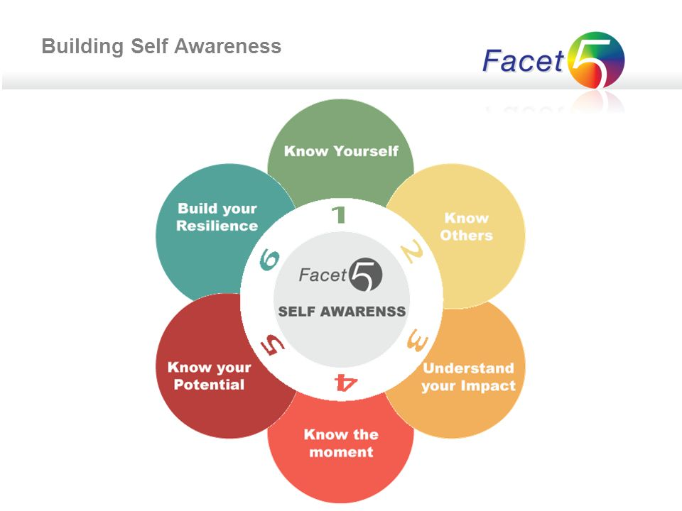 Facet : Przedstawienie Facet5 jest obecnie jednym z najbardziej nowoczesnych oraz zaawansowanych pomiarów osobowości.