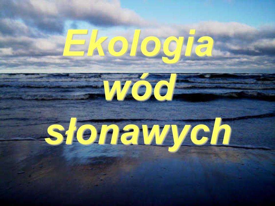 Warunki fizykochemiczne Morza Bałtyckiego Zasolenie: Przewaga dopływu wód rzecznych i opadowych nad wlewami słonych wód z Kattegatu ma decydujący wpływ na zasolenie Bałtyku, które jest niewielkie w porównaniu z zasoleniem oceanu.
