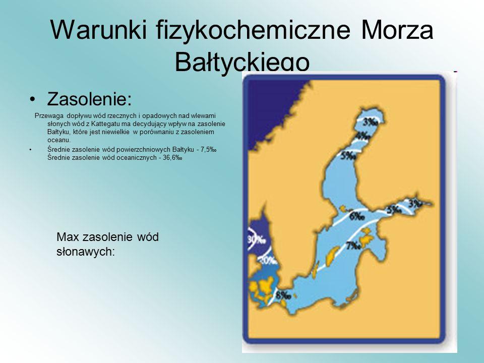 Warunki fizykochemiczne Morza Bałtyckiego Zasolenie: Przewaga dopływu wód rzecznych i opadowych nad wlewami słonych wód z Kattegatu ma decydujący wpły