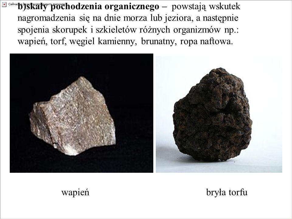 b)skały pochodzenia organicznego – powstają wskutek nagromadzenia się na dnie morza lub jeziora, a następnie spojenia skorupek i szkieletów różnych or