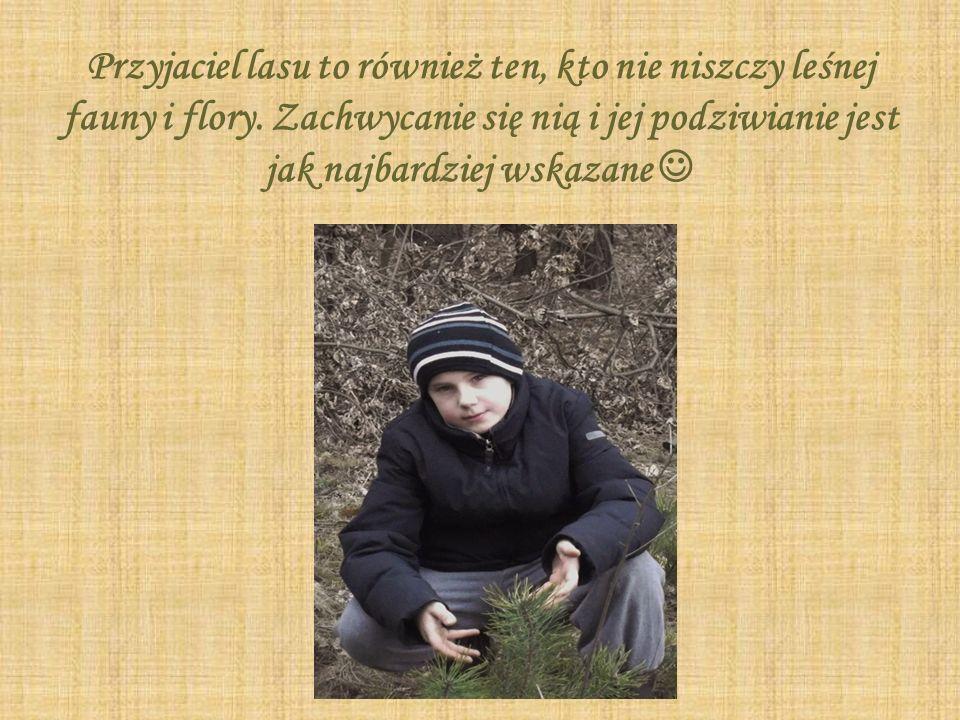 Dziękuję za obejrzenie mojej prezentacji multimedialnej Adam Myśko Publiczna Szkoła Podstawowa im.