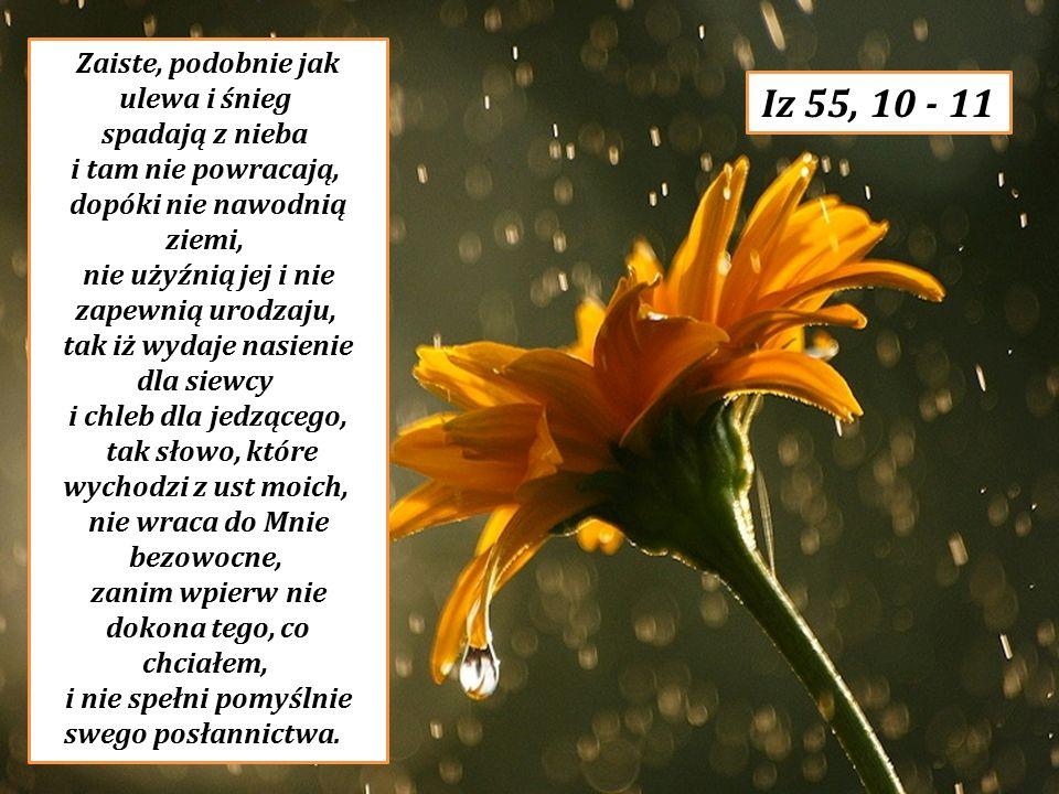 Zaiste, podobnie jak ulewa i śnieg spadają z nieba i tam nie powracają, dopóki nie nawodnią ziemi, nie użyźnią jej i nie zapewnią urodzaju, tak iż wyd