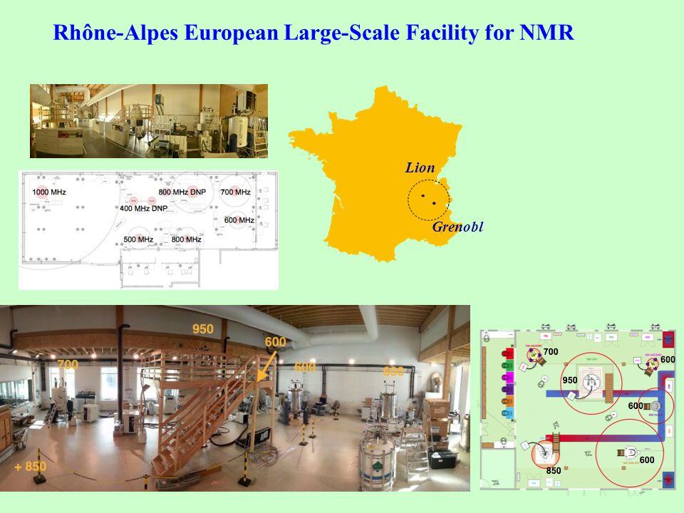 Rhône-Alpes European Large-Scale Facility for NMR Lion Grenobl