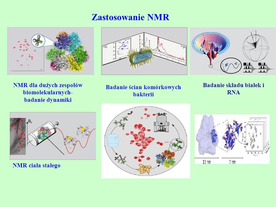 Zastosowanie NMR NMR dla dużych zespołów biomolekularnych- badanie dynamiki Badanie ścian komórkowych bakterii Badanie składu białek i RNA NMR ciała s